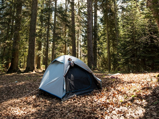 A campsite with a tent where a top-rated solar shower would be useful