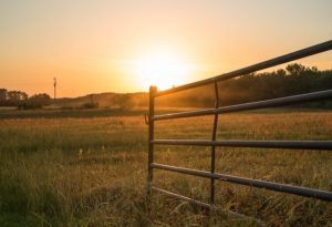 The best solar gate opener of 2020 opening a metal gate during sunset