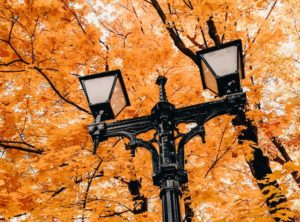 The best solar lamp post of 2020 in fall with orange leaves surrounding it
