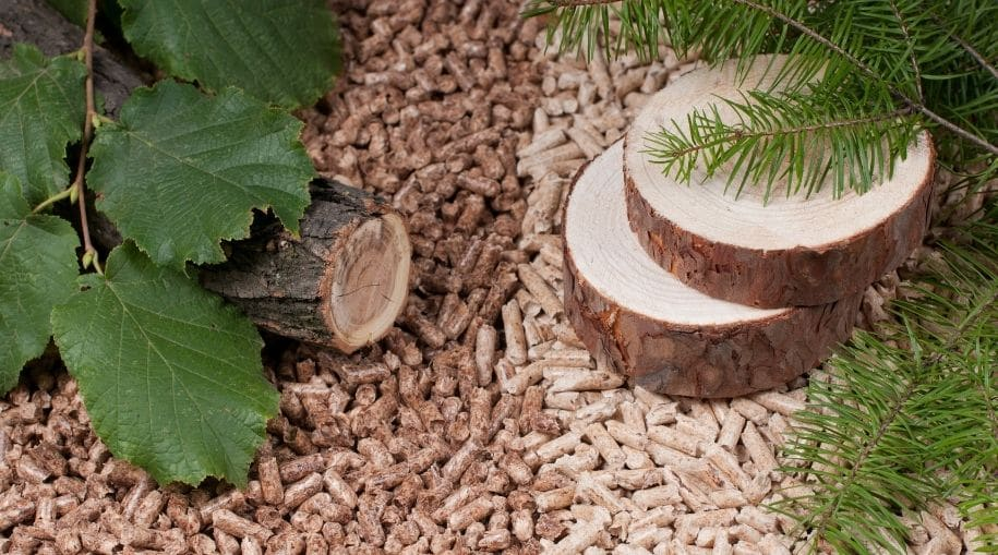 Biomass Energy in wood form