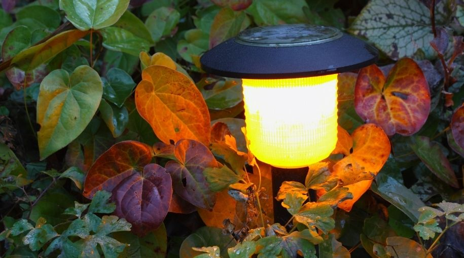 Outdoor Lighting Without Wiring illuminating a garden